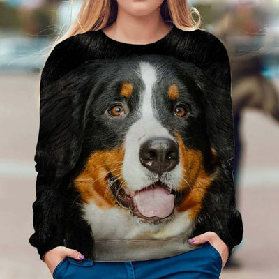 Bernese Mountain Dog - Face Hair - Premium Sweatshirt