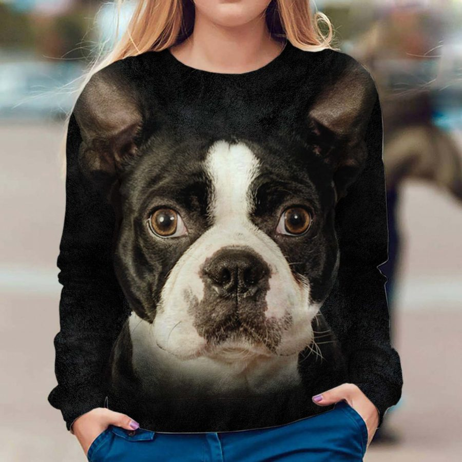 Boston Terrier - Face Hair - Premium Sweatshirt