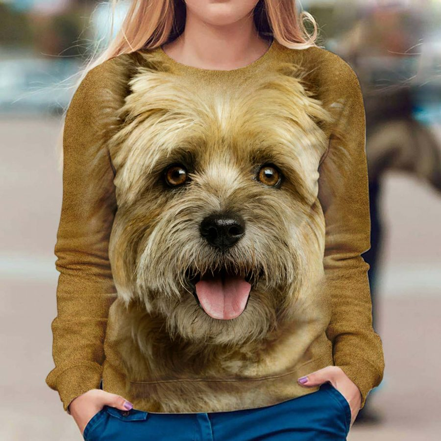 Cairn Terrier - Face Hair - Premium Sweatshirt