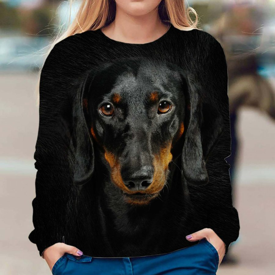 Dachshund - Face Hair - Premium Sweatshirt