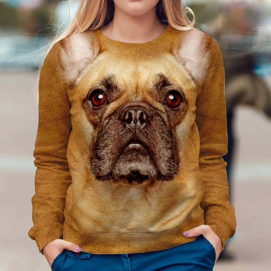 French Bulldog - Face Hair - Premium Sweatshirt