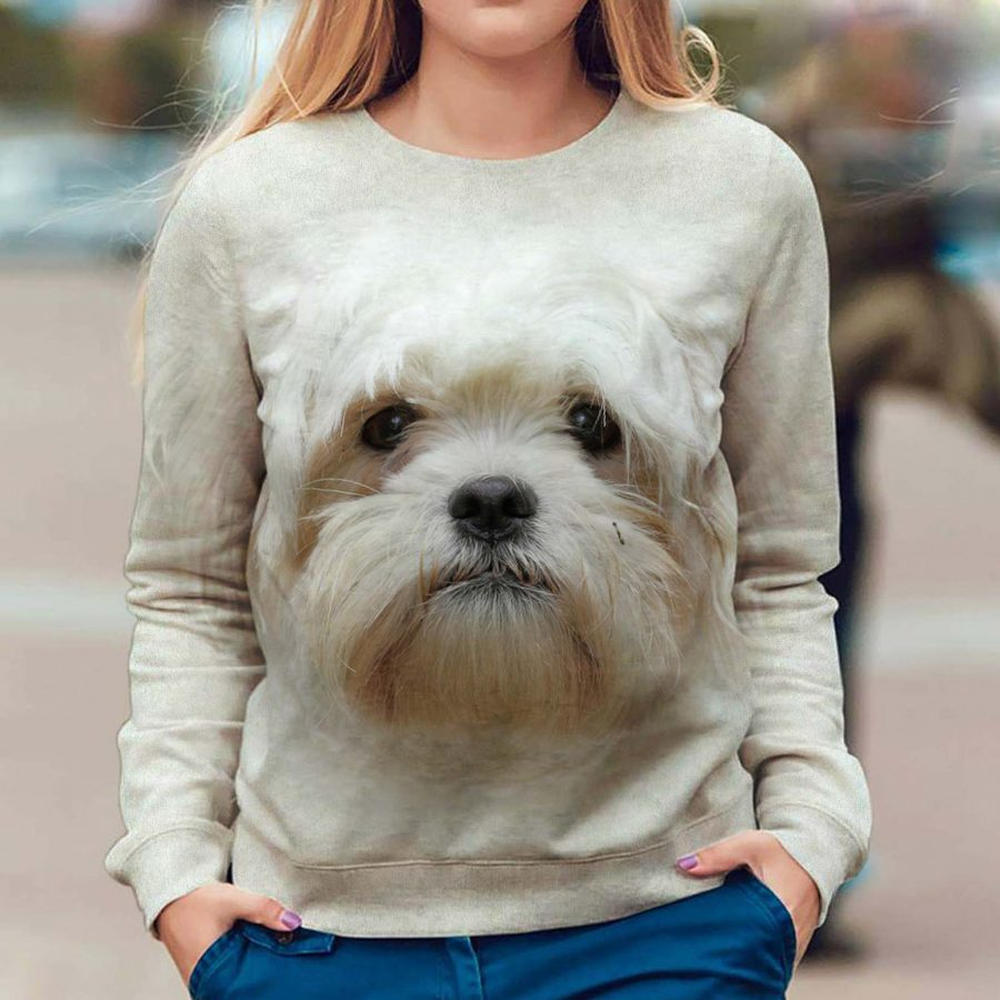 Havanese - Face Hair - Premium Sweatshirt
