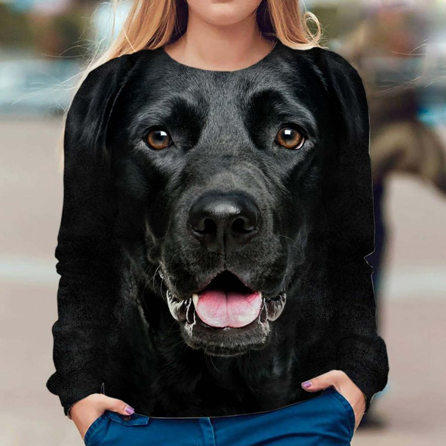 Labrador Retriever - Face Hair - Premium Sweatshirt