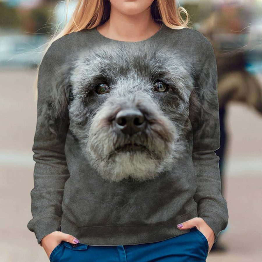 Schnoodle - Face Hair - Premium Sweatshirt