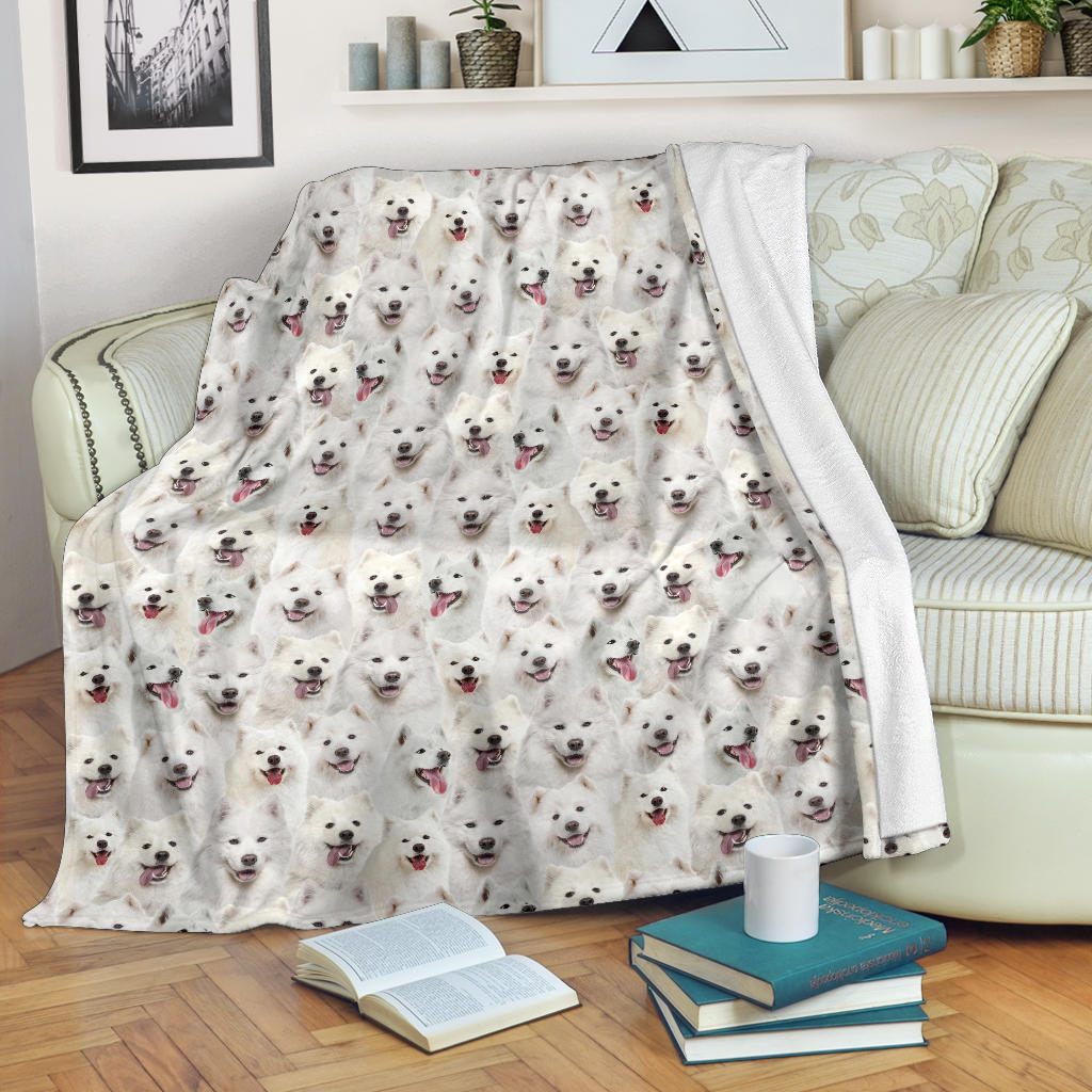 Samoyed Full Face Blanket