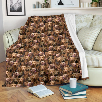 Chesapeake Bay Retriever Full Face Blanket
