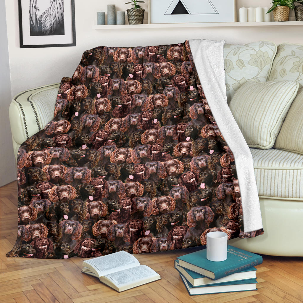 Boykin Spaniel Full Face Blanket