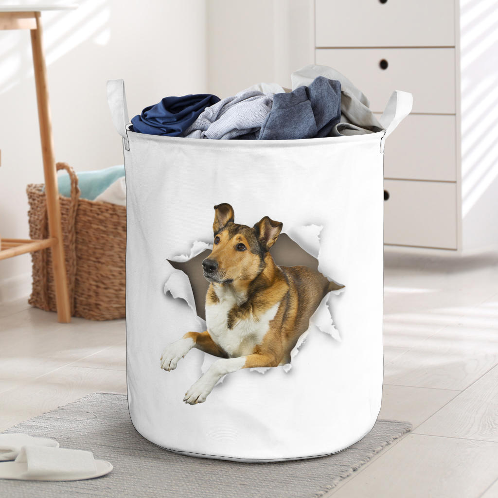 Smooth Collie - Tornpaper - LB