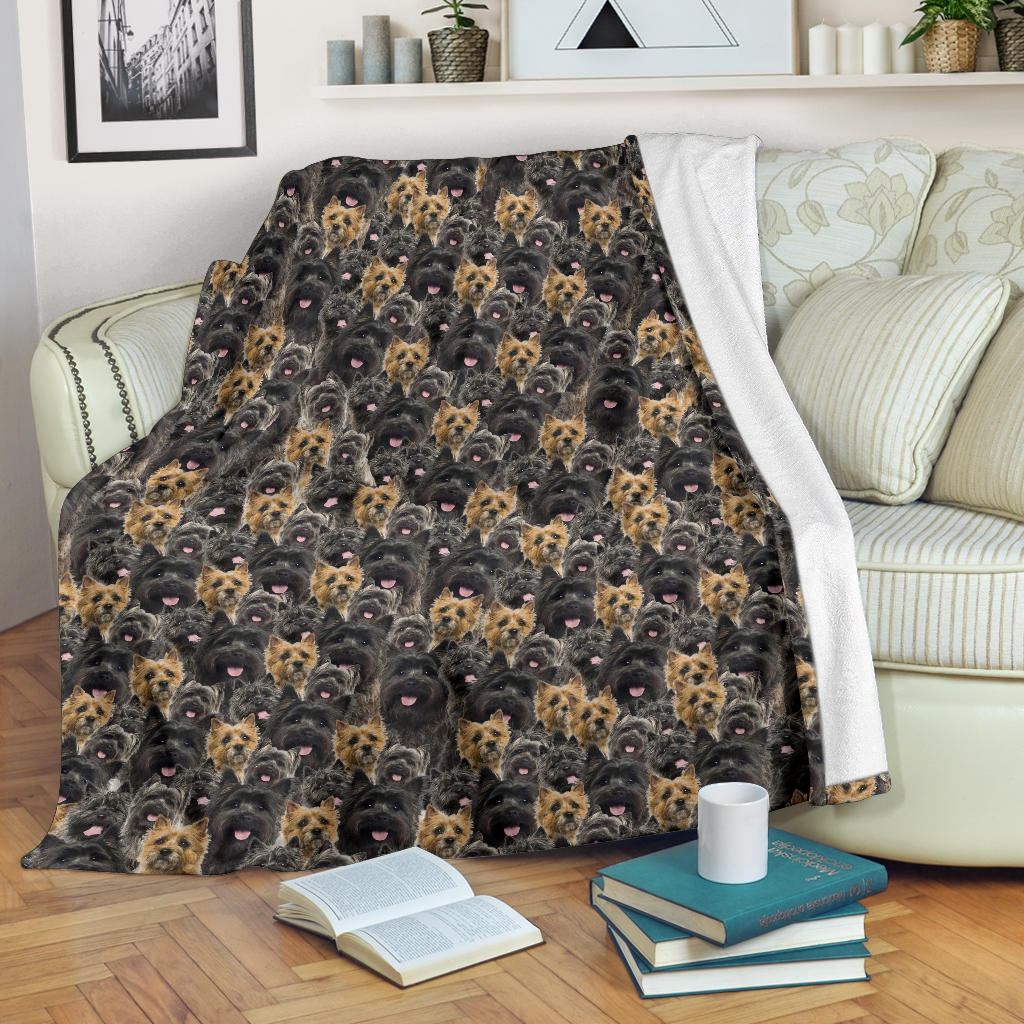 Cairn Terrier Full Face Blanket