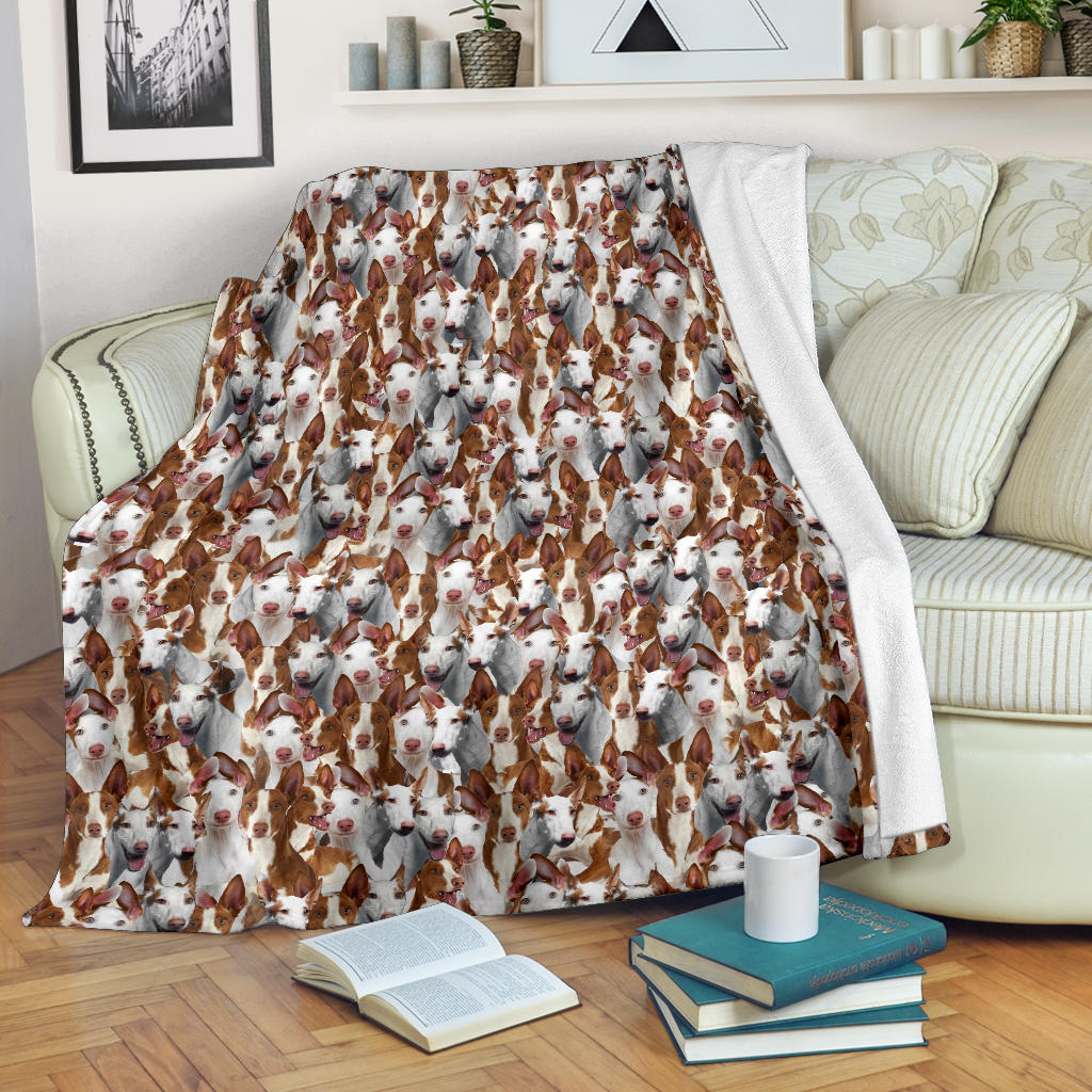 Ibizan Hound Full Face Blanket
