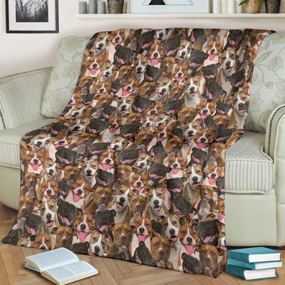 American Staffordshire Terrier Full Face Blanket