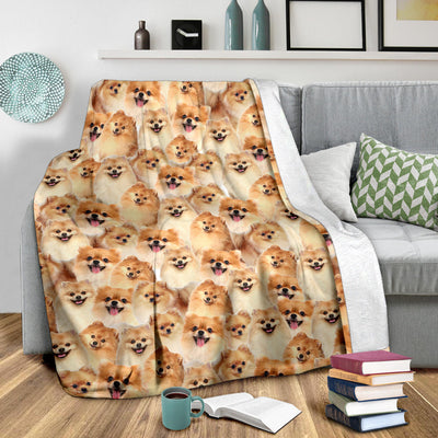 Pomeranian Full Face Blanket