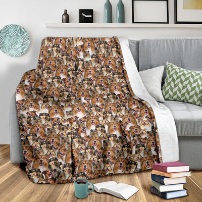 Rough Collie Full Face Blanket