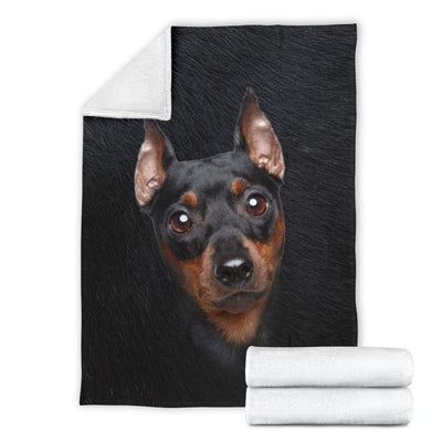 Miniature Pinscher - Blanket - 1365