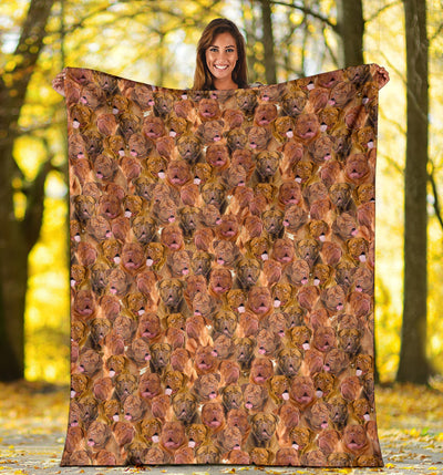 Dogue de Bordeaux Full Face Blanket
