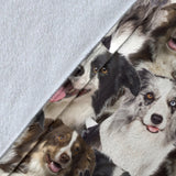 Border Collie - Blanket - 1358