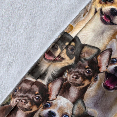 Chihuahua Full Face Blanket