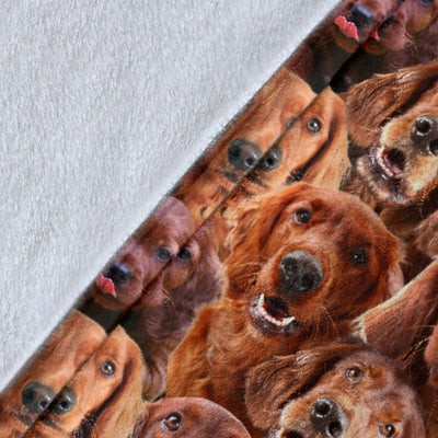 Irish Setter Full Face Blanket