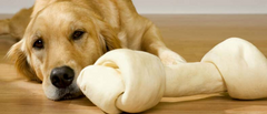 RAWHIDE TREATS - ARE THEY DANGEROUS FOR YOUR DOG?