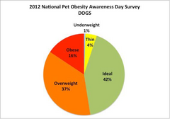 Is Your Pet part of the Obesity Epidemic
