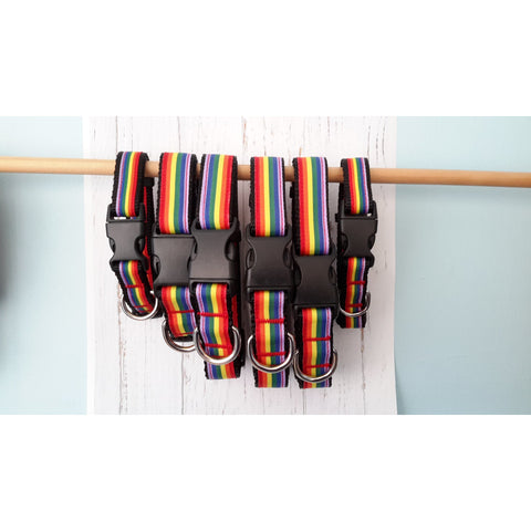 Pride Rainbow Collar - For Dogs - Nuts About Mutts