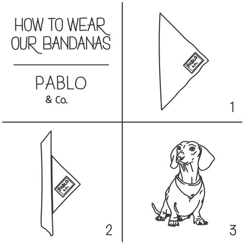 Pablo & Co - Palms - Bandana