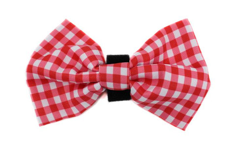 Pablo & Co - Red & White Gingham - Bowtie
