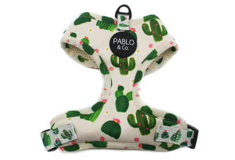 Pablo & Co - Cactus - Adjustable Harness