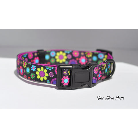 Oopsie Daisy Collar - For Dogs - Nuts About Mutts