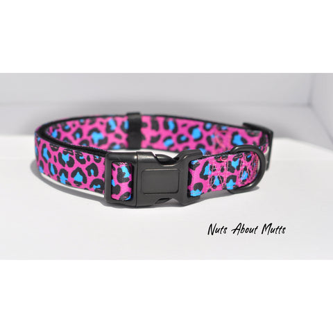 Hot Pink and Turquoise Leopard Collar - For Dogs - Nuts About Mutts