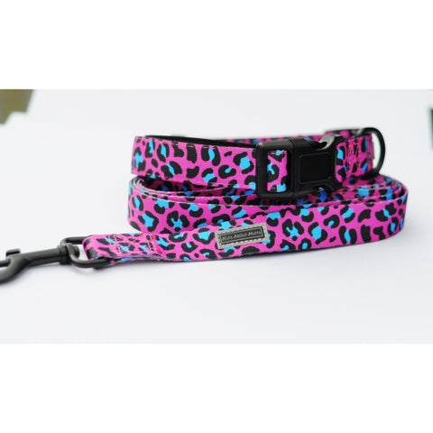 Hot Pink and Turquoise Leopard Lead - For Dogs - Nuts About Mutts