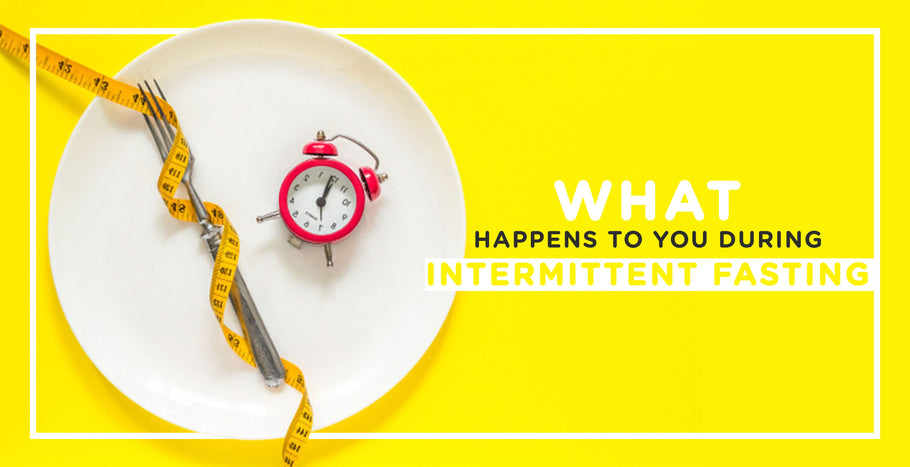 What happens to your body during Intermittent Fasting