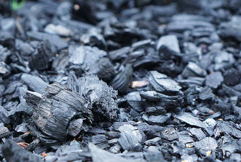 Charcoal is the answer to your oil control woes!