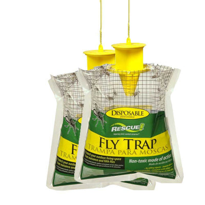 Fly Trap x 2