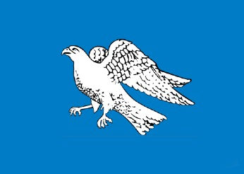 iceland - old falcon flag