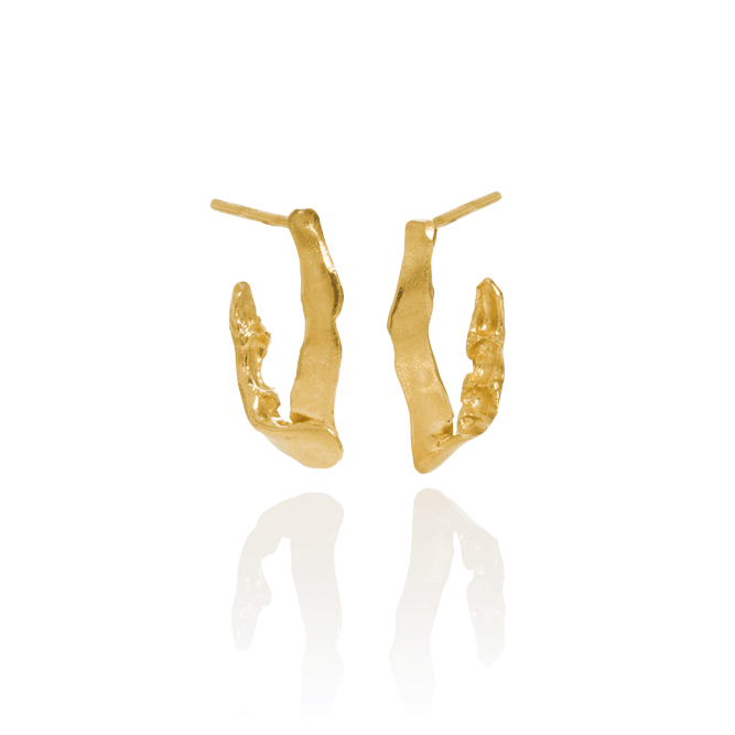 CYGNUS earrings