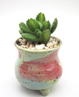 Handmade succulent pot colour glaze