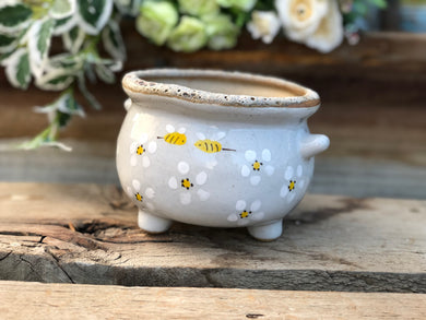 Handmade succulent clay pot with bubble  - Daisy and bees