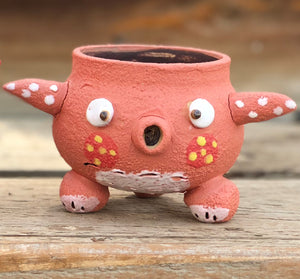 Hand Made Pink Octopus Pot