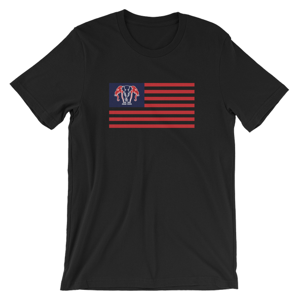 Laos Nation Flag T-Shirt