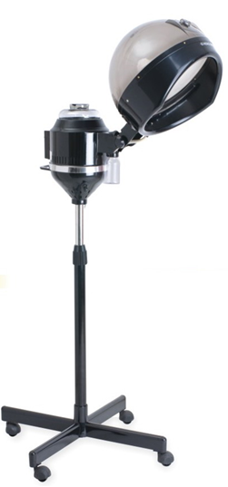 Hair Steamer Professional Standing