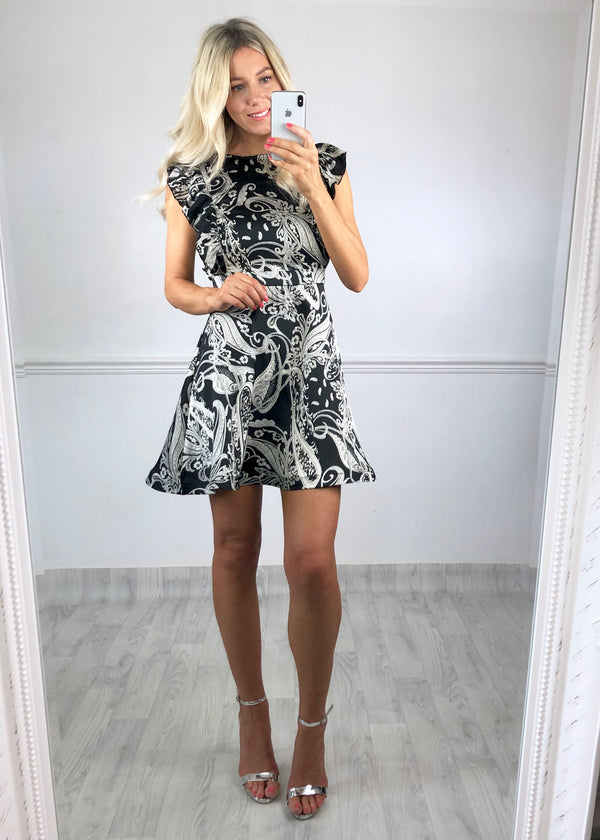 Monica Skater Dress - Silver Paisley