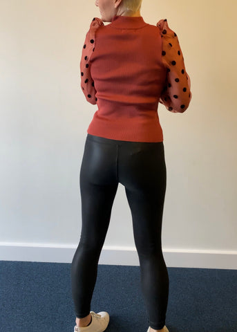 Super Sexy Pants (Leather Look Leggings)