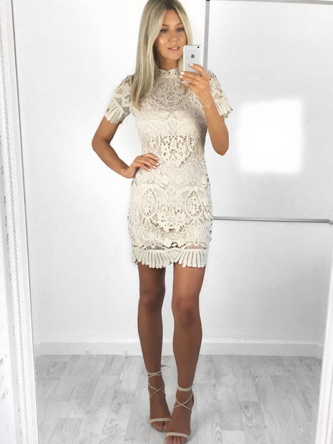 Hailey High Neck Lace Dress