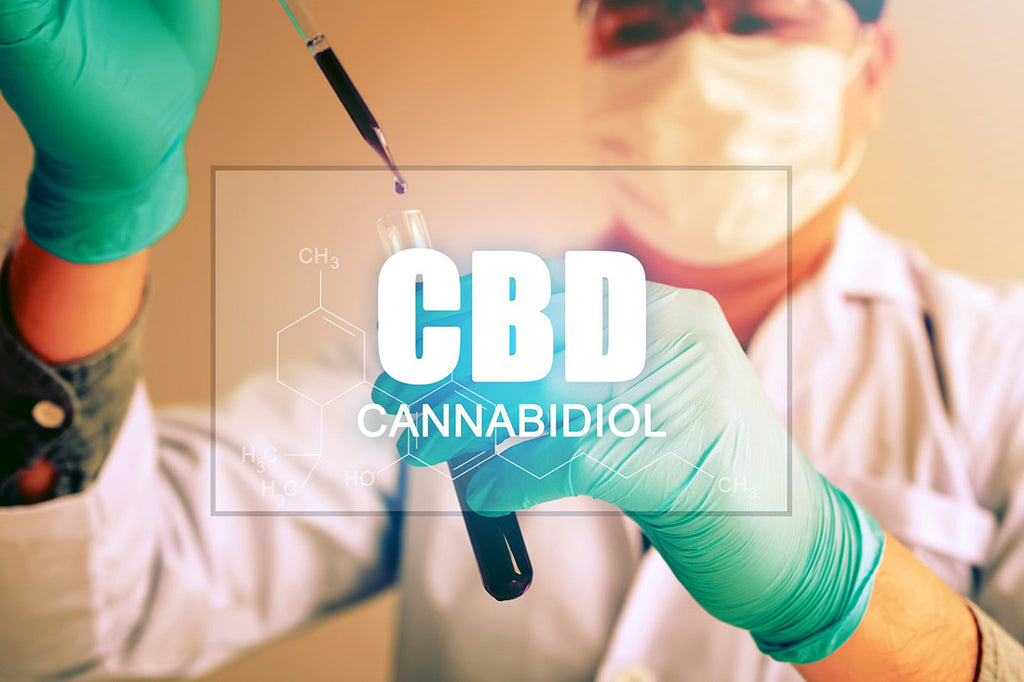 CBD and Drug Tests: Here is all You Need to Know to be Safe