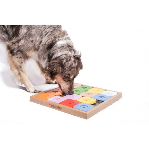 My Intelligent Pets Dog' Sudoku Medium Genie Color
