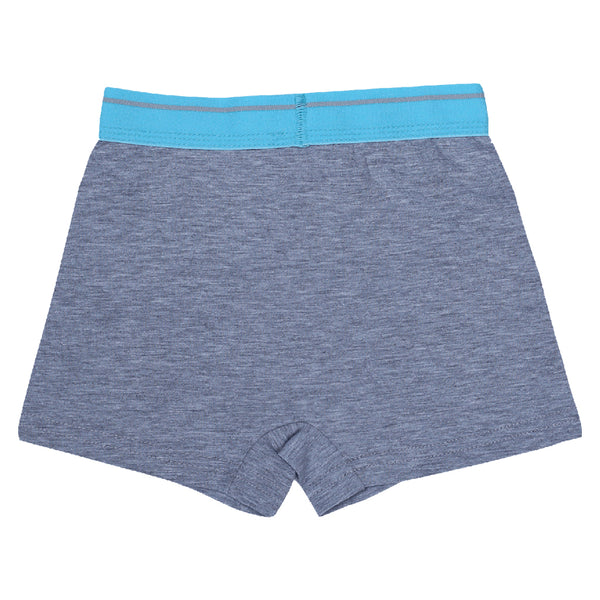 Boys boxers c.410 Gray and Blue - Allegro Styles
