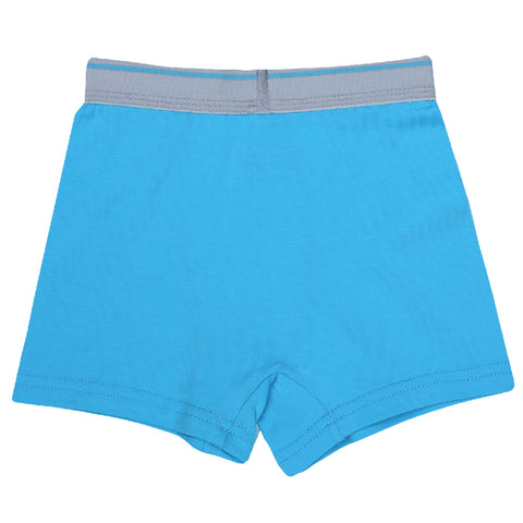 Boys Boxers c.410 Blue and Gray - Allegro Styles