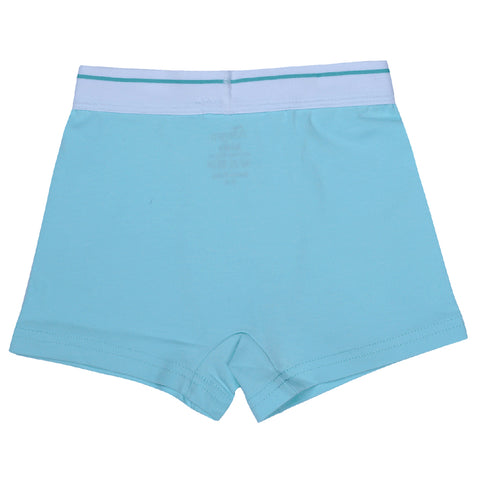 Boys Boxers c.410 Light Blue and Gray - Allegro Styles