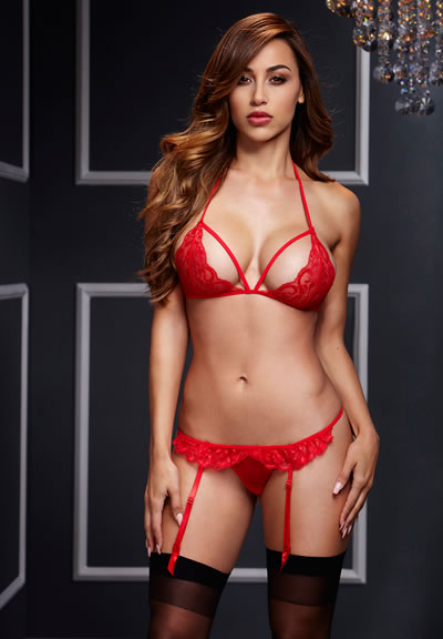 Two Piece Red Lace Bra And Garter Panty